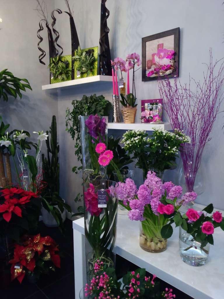 Chlorophylle : vente de fleurs coupées et compositions en Gironde (33)