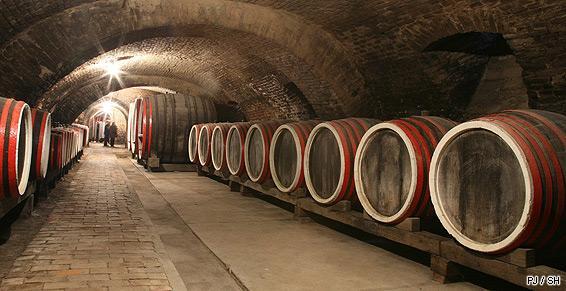 Boissons vente viticulteur producteur vinificateur tonneau barrique