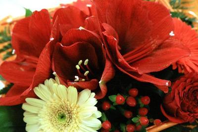 aux fleurs de l'aulne 152.JPG
