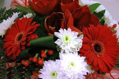 aux fleurs de l'aulne 151.JPG