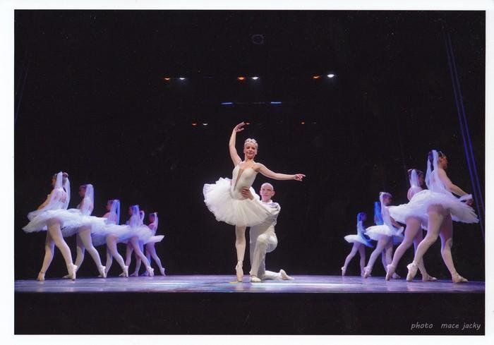 Organisation spectacle Danse Sophie Willaume Caen