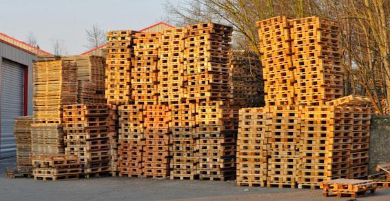 Démarche pour la préservation de l'environnement Fibem Tourcoing