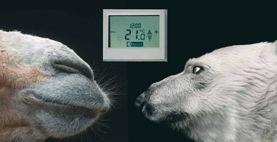 contraste eco naturelle du chaud et froid