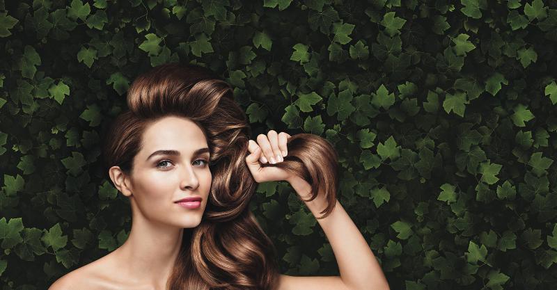 Beauté du cheveu