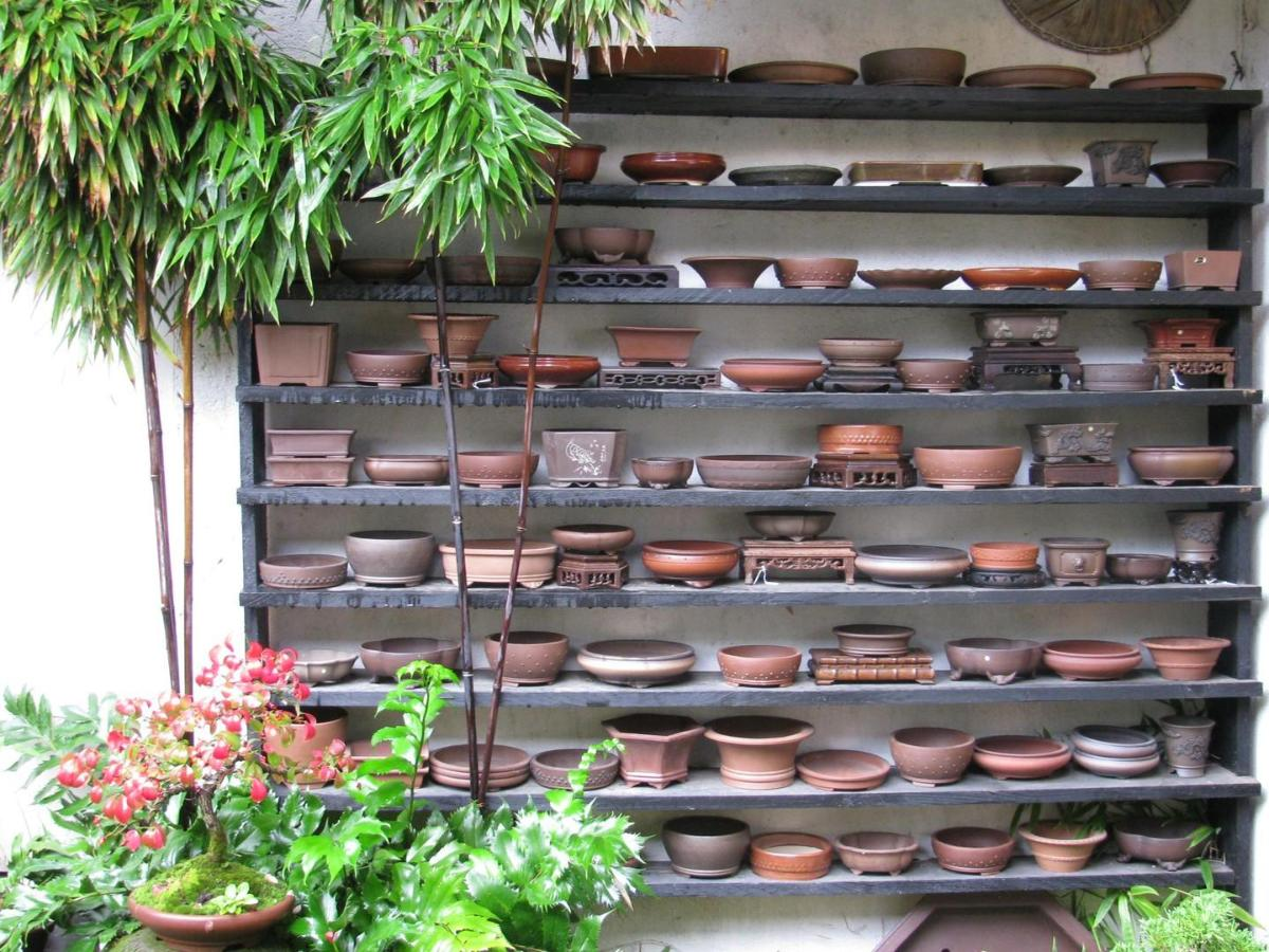 Bonsai Barber Selection de pots