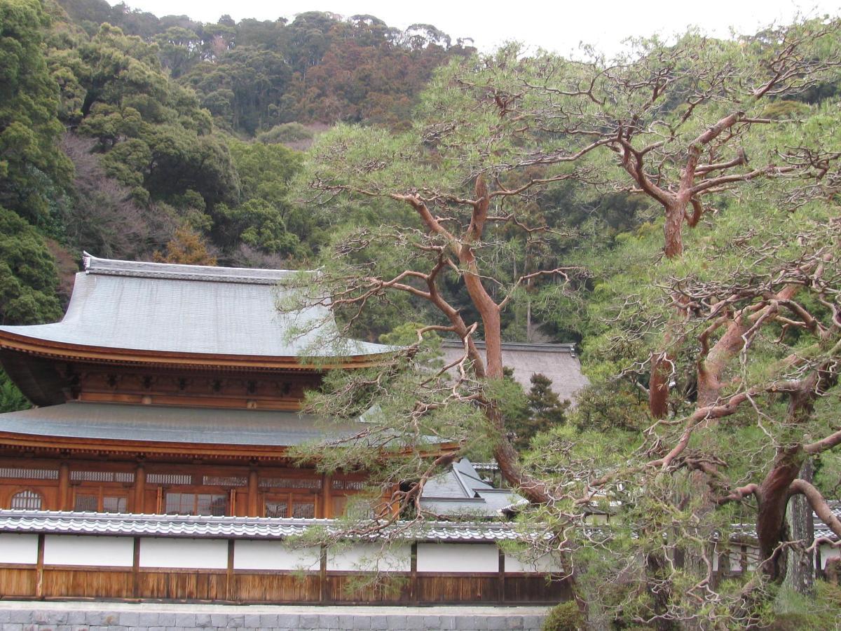 JAPON 2014  Shizuoka