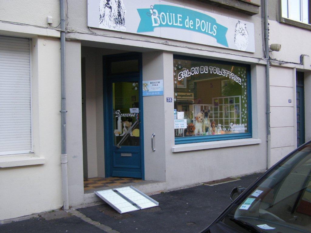 Boule de Poils réalise le soin des coussinets de votre félin à St-Omer