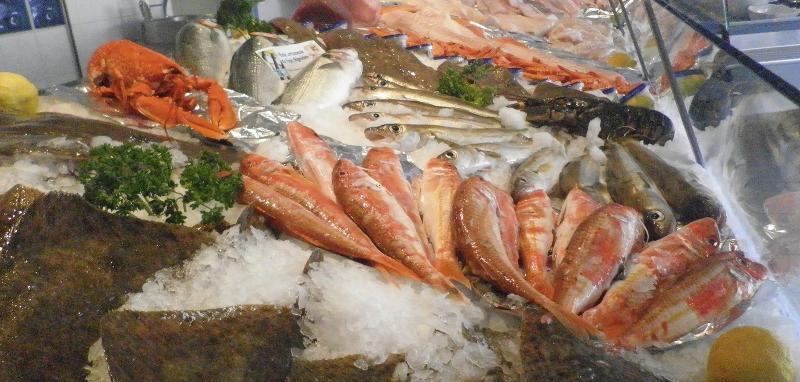 Rayon de poissons et crustacés - La cote sauvage