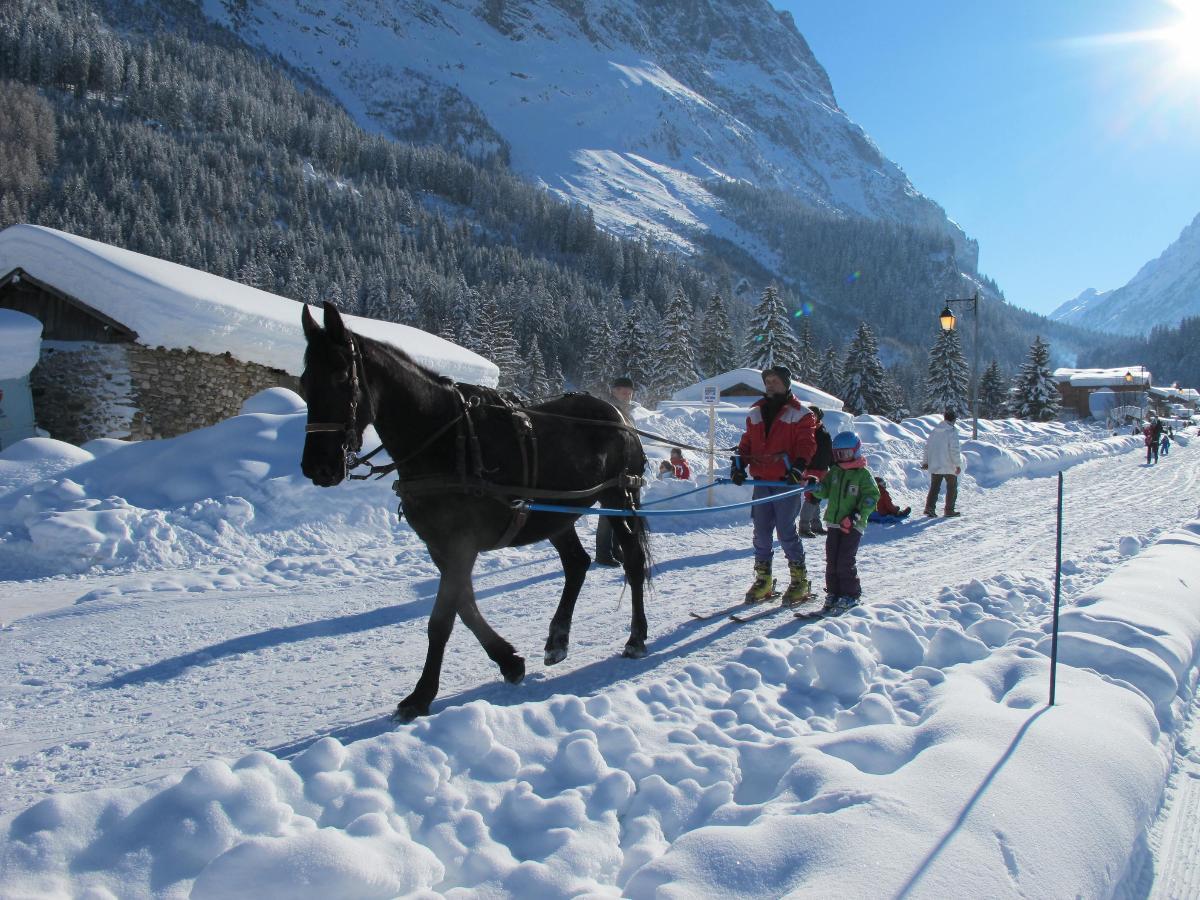 Ski joëring Le Ranch de L'Ancolie en Savoie (73