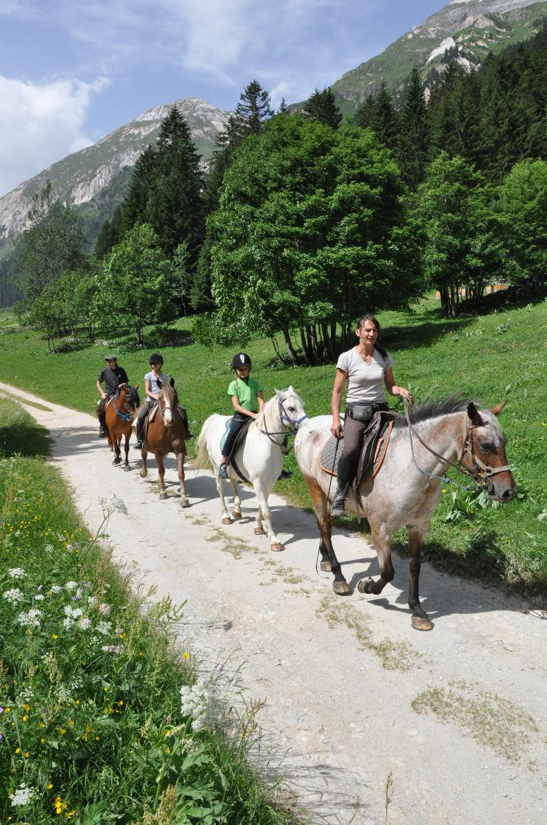 La Vanoise Le Ranch de L'Ancolie en Savoie (73