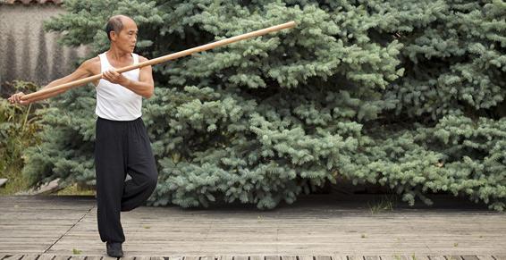 Taï-Chi Centre à Montpellier dans l'Hérault (34), Arts martiaux