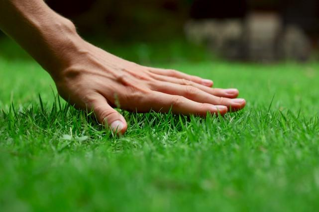 -entretien-espaces-verts-boulogne-billancourt.jpg