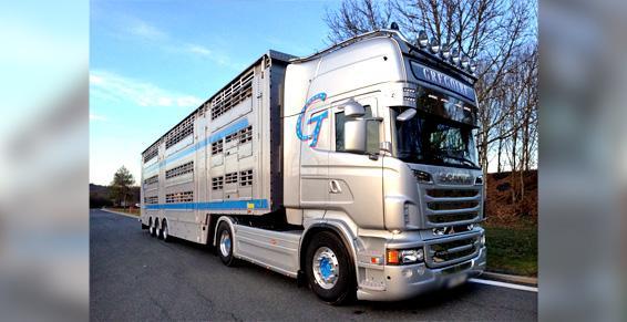 Transport d'animaux - Bovins, porcins et ovins