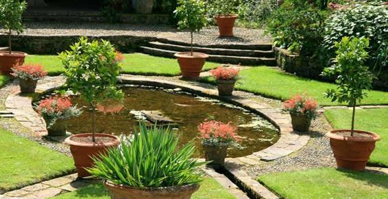 Main Verte - Paysagiste - Jougne - Jardin avec bassin