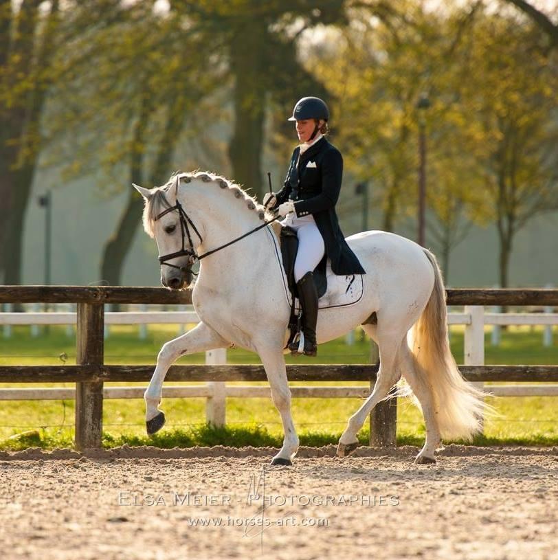 Instructrice Cours chevaux, propriétaires, cours particuliers